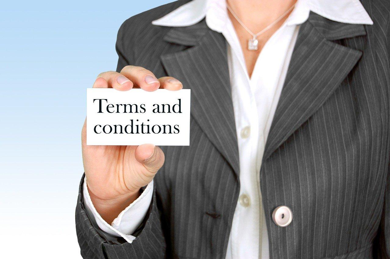 EBICA TERMS & CONDITIONS